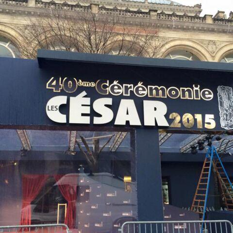 César 2015: les derniers préparatifs