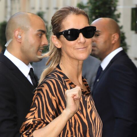 PHOTOS – Céline Dion à Paris : ses looks très originaux et fashion de it-girl, de la combinaison panthère au total look rose
