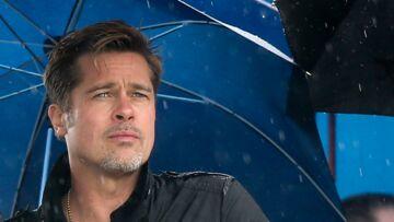 Une plasticienne fait condamner Brad Pitt: «Il a coulé ma boîte»