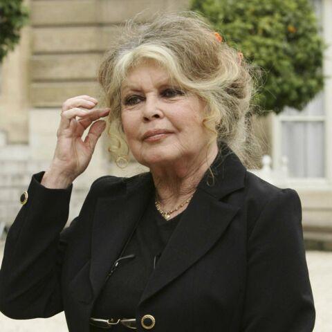 Corrida, fourrure…Brigitte Bardot attaque