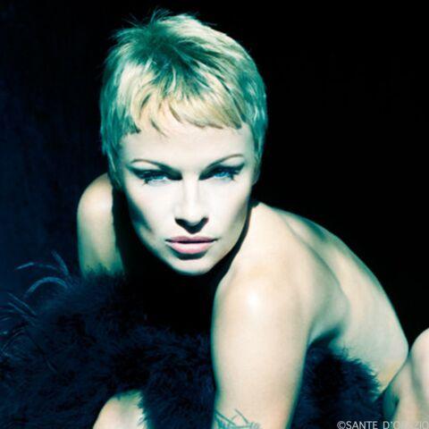 Pamela Anderson, sexy quadra