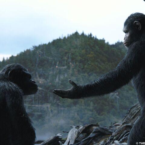 Gala a vu La planète des singes: l'affrontement ***