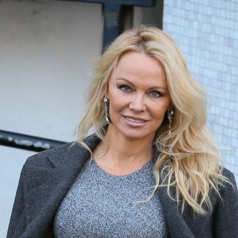 "Pamela Anderson: son incroyable ""love story"" avec Julian Assange, le fondateur de WikiLeaks"