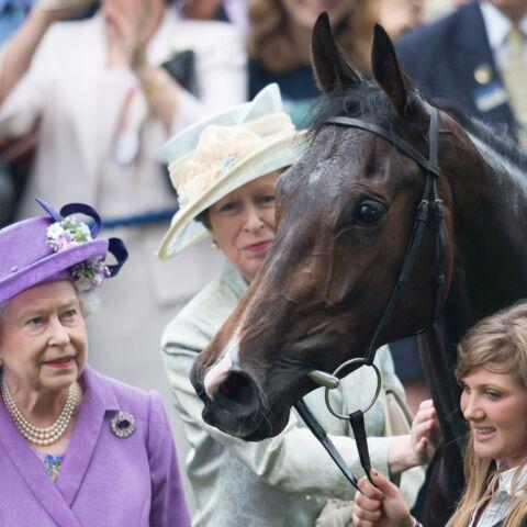 Elisabeth II, sa jument contrôlée positive à la morphine