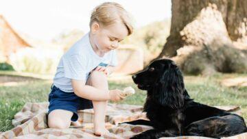 Baby George: polémique suite à sa dernière photo offiicielle