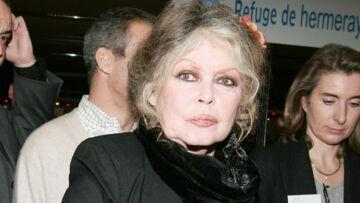 Brigitte Bardot s'explique sur ses liaisons supposées avec Johnny Hallyday et Mick Jagger
