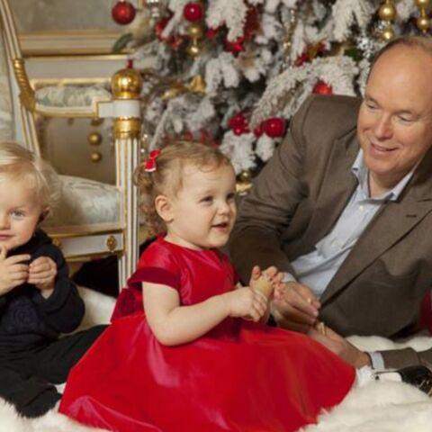 PHOTOS – Classiques, bling-bling ou originaux, les stars nous dévoilent leurs sapins de Noël