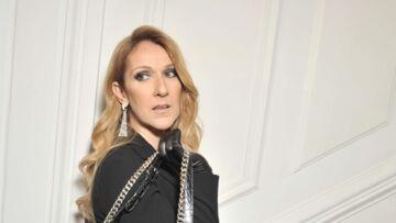 Céline Dion: obligée de rendre son pull «buzz» inspiré de Titanic à 820 euros