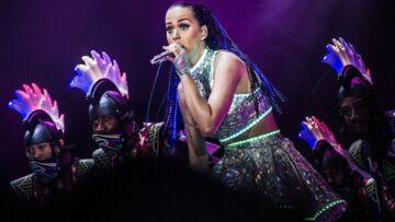 Katy Perry: son portrait exposé dans un musée américain