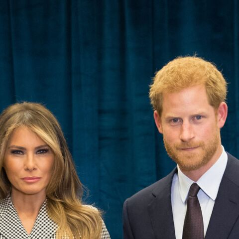 PHOTO – L'étrange geste de la main du prince Harry avec Melania Trump expliqué