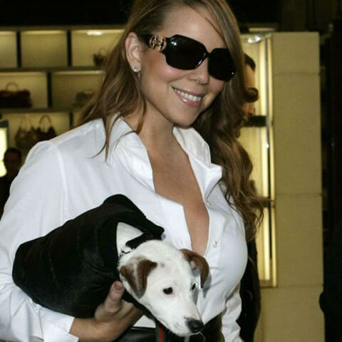 Mariah Carey: chauffeur privé et soins du visage pour ses toutous