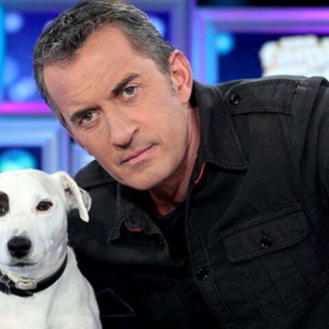 Christophe Dechavanne (The Wall): où est passé son célèbre chien, Adeck?