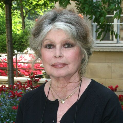 La lettre de Brigitte Bardot à Alain Delon: «Alain, je t'aime 80 fois»