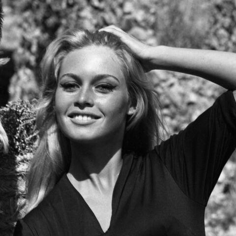 Brigitte Bardot: «J'ai vécu ma vie à mes risques et périls»