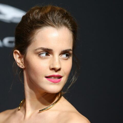Emma Watson ne sortira pas avec Brad Pitt
