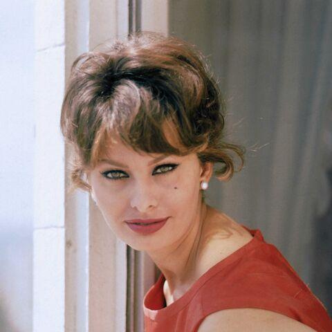 Rétro beauté – Sophia Loren, icône intemporelle