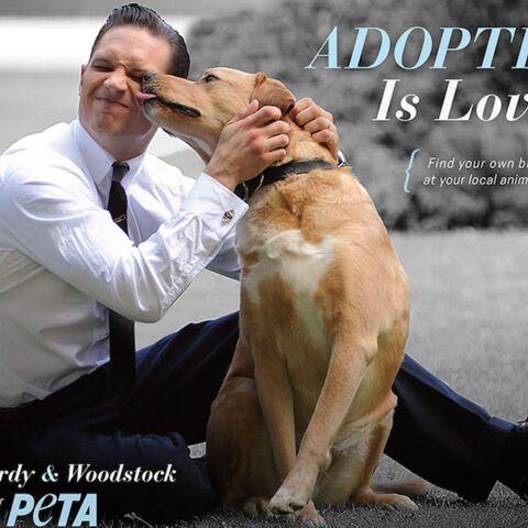 Tom Hardy: nouveau visage de PETA
