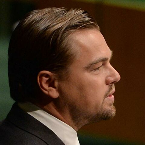 Leonardo DiCaprio au cœur d'un immense scandale financier