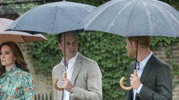 VIDEO – Mort de Diana: La cérémonie privée des princes Harry et William pour lui rendre hommage