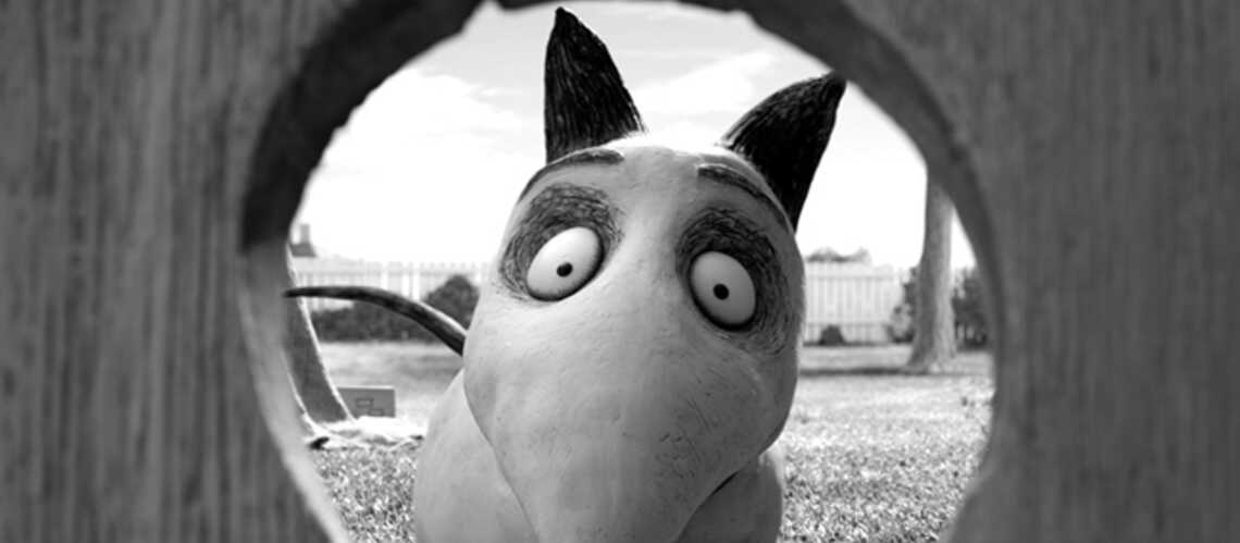 Frankenweenie, Frankenstein junior