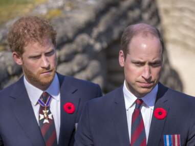 PHOTOS - Lady Diana : zoom sur ses héritiers