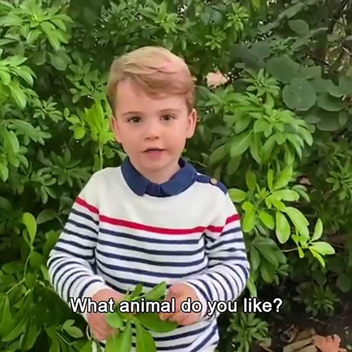 Le prince Louis, lors d'une vidéo diffusée en octobre 2020 avec David Attenborough.