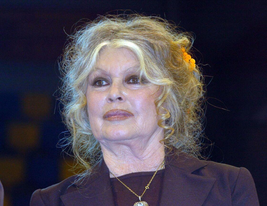 Brigitte Bardot, ici en 2004, s'est opposée aux mouvements #MeToo et #BalanceTonPorc