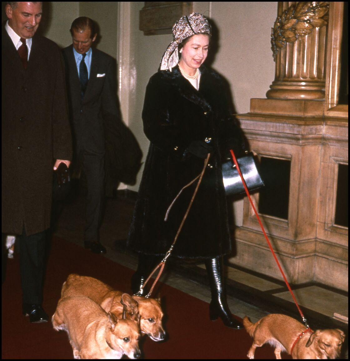 La reine Elizabeth promène ses trois chiens à Sandringham, le 11 décembre 1992