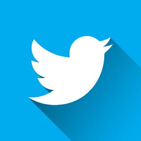 """""""Torture mentale», «racisme»… Excédée, une célèbre personnalité quitte à son tour Twitter"""