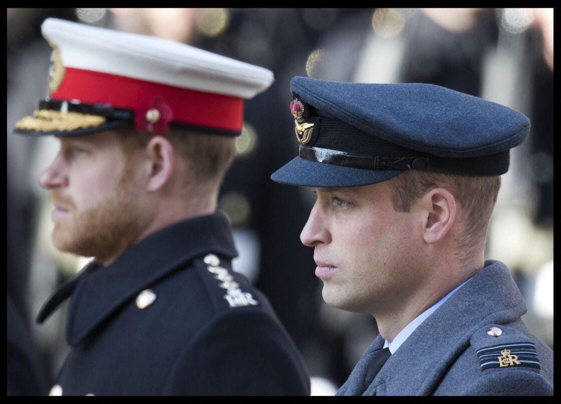 Les princes William et Harry, jadis si complices, semblent avoir coupé les ponts