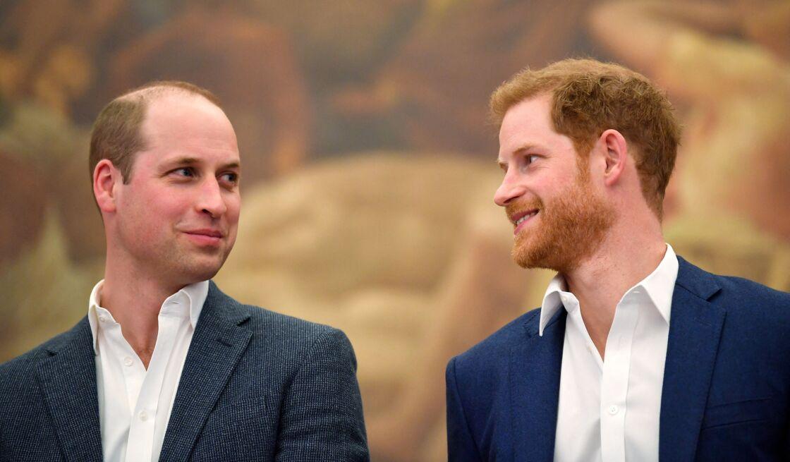 Le prince William et le prince Harry, en avril 2018.