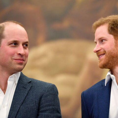 Les retrouvailles d'Harry et William en l'honneur de Diana compromises? «Un sérieux doute» plane