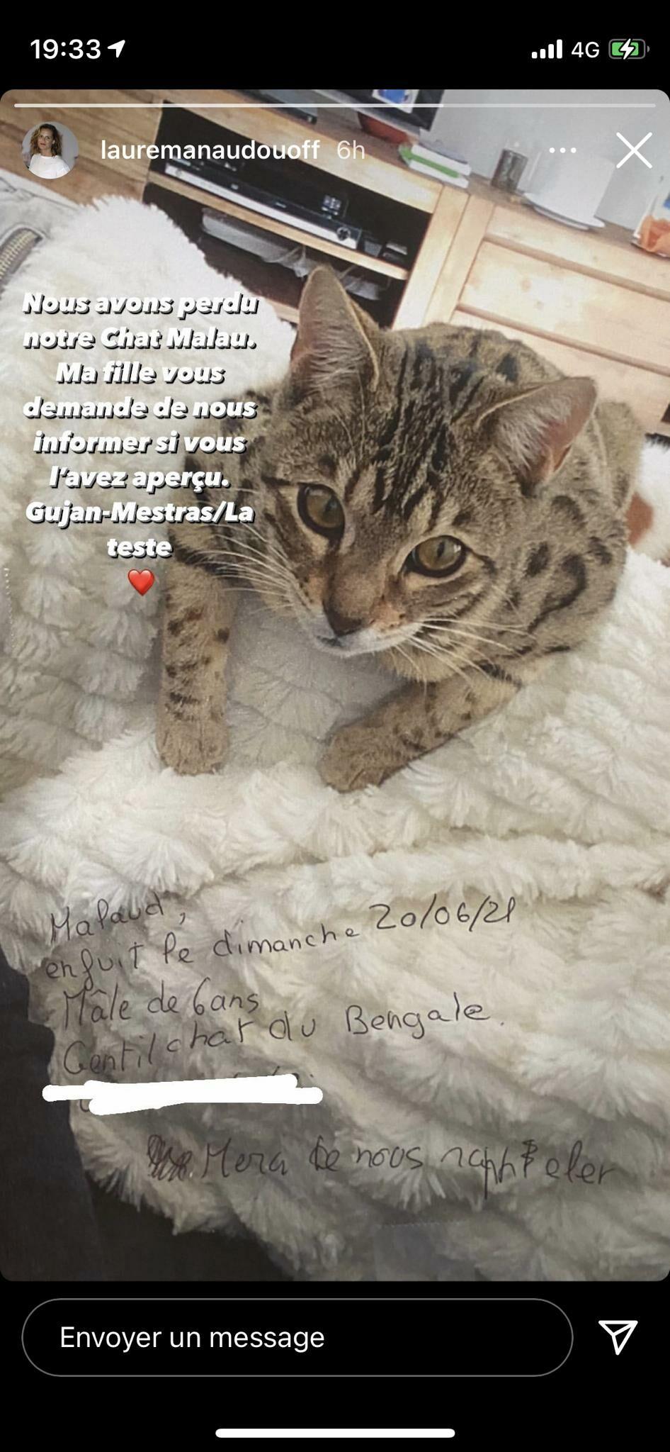 Laure Manaudou partage une photo de son chat, disparu depuis près d'une semaine