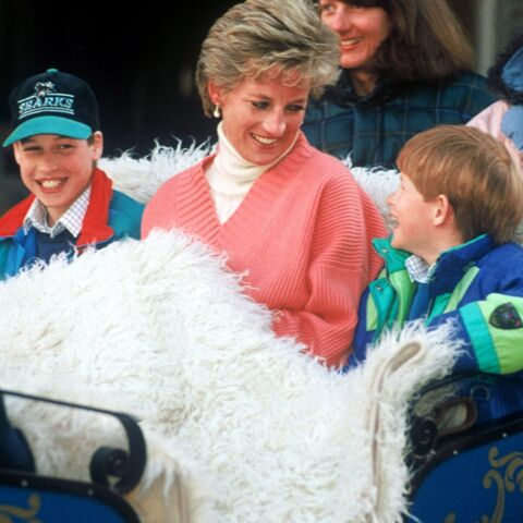 PHOTOS – Diana: ses plus beaux moments avec William et Harry