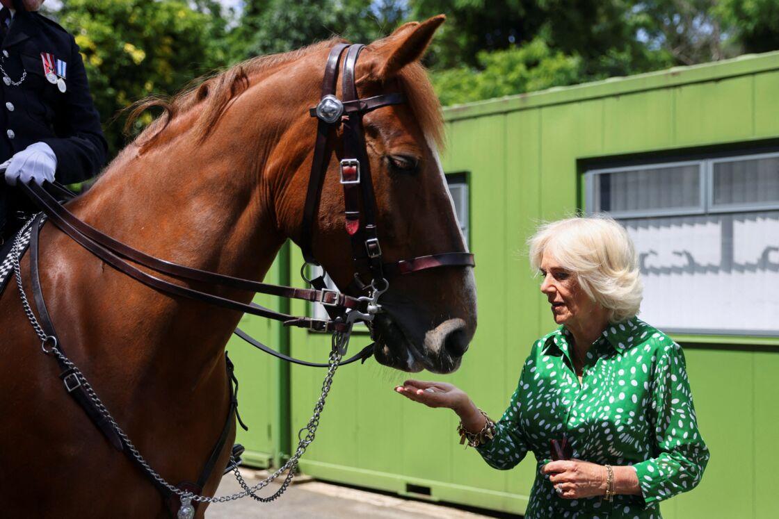 Camilla Parker-Bowles est passionnée par les chevaux.