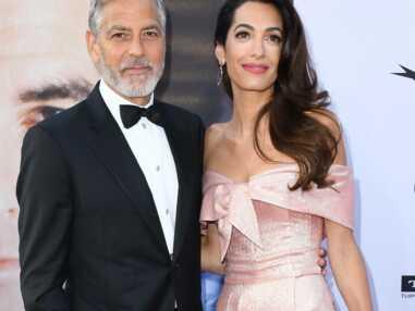 PHOTOS - Comme George Clooney et Amal, ces stars ont choisi de vivre en France