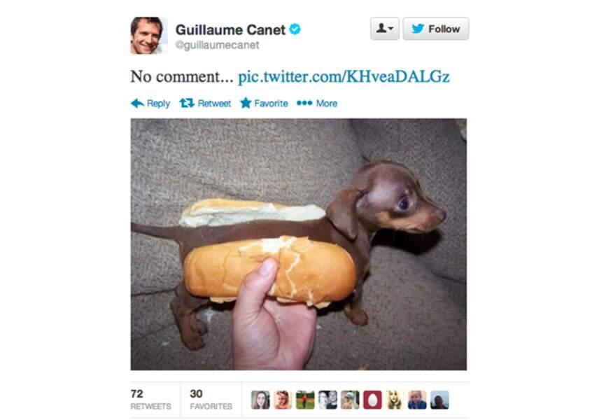 L'étrange chien de @GuillaumeCanet