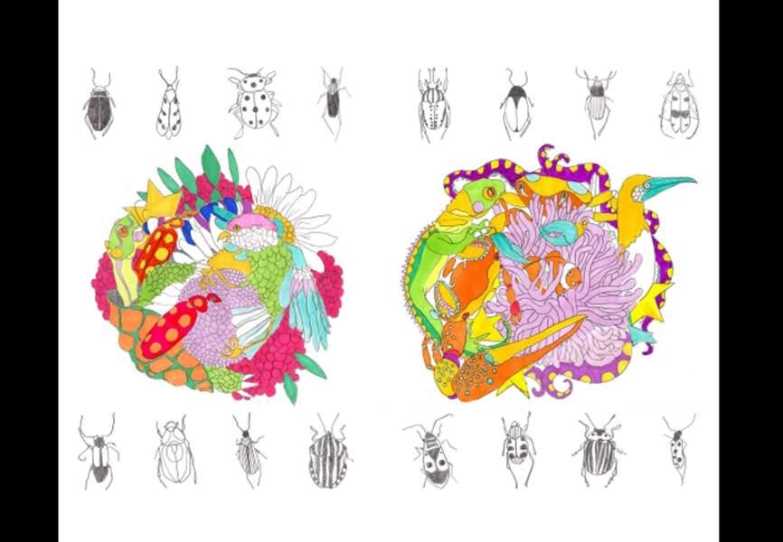 Selon Dolores - Collection Galapagos – set de 2 planches tatouages – 12€ Selondolores.com