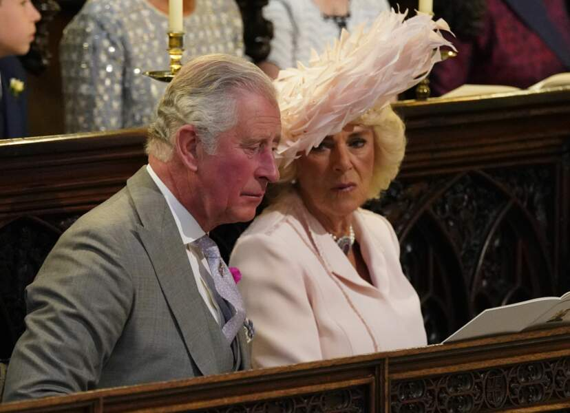 Le prince Charles et Camilla Parker Bowles, très complices