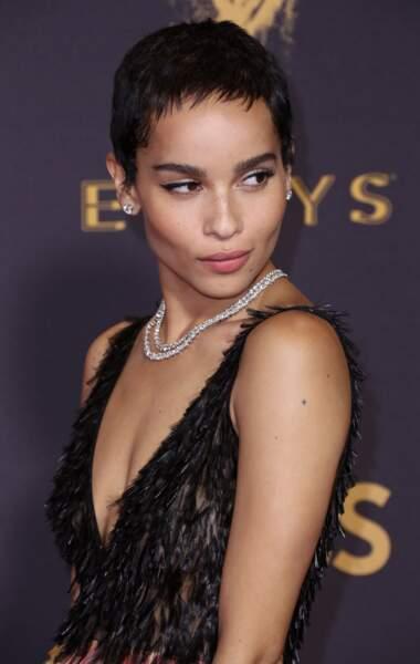 Zoë Kravitz, la fille du chanteur Lenny Kravitz, a posé pour Calvin Klein, Alexander Wang et Swarowski. Actrice, el