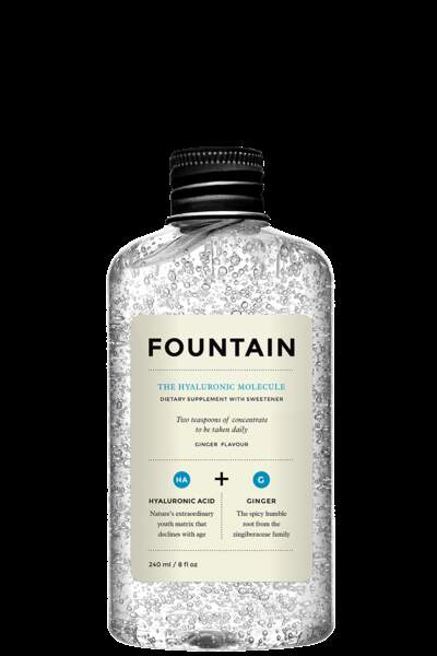 The Hyaluronic Molecule, Foutain, 40 €