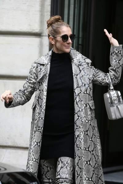 Un bun haut, un sac couture porté main, des cuissardes et un manteau en python, Céline Dion enflamme Paris