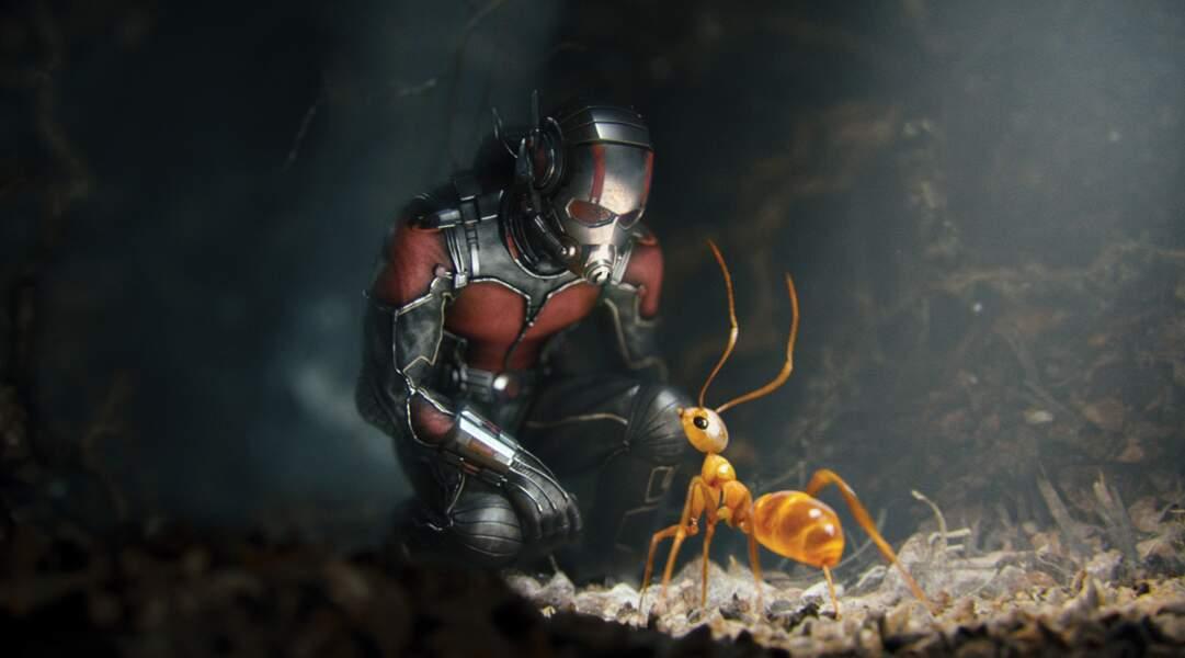 Ant-Man ou l'homme fourmis. Il fallait y penser. Ryan Reynolds l'incarne désormais à l'écran.