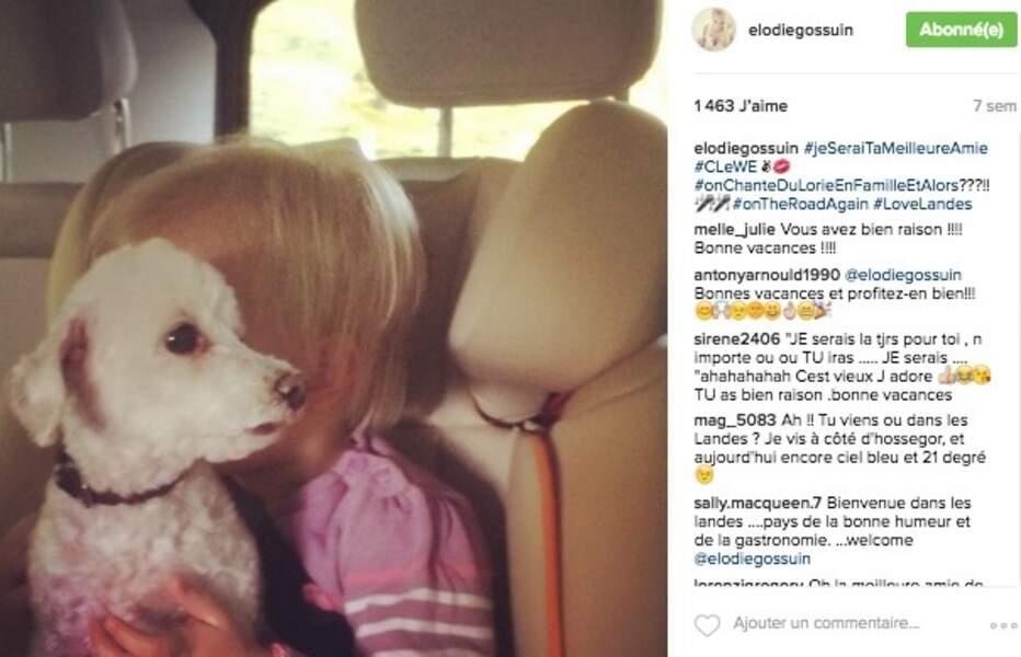 En voiture avec le chien