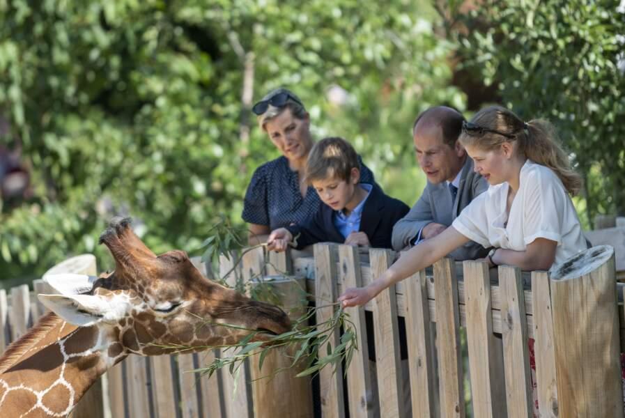 """Les époux de Wessex et leurs enfants visitent le zoo """"Wild Place Project"""" à Bristol, le 23 juillet 2019"""
