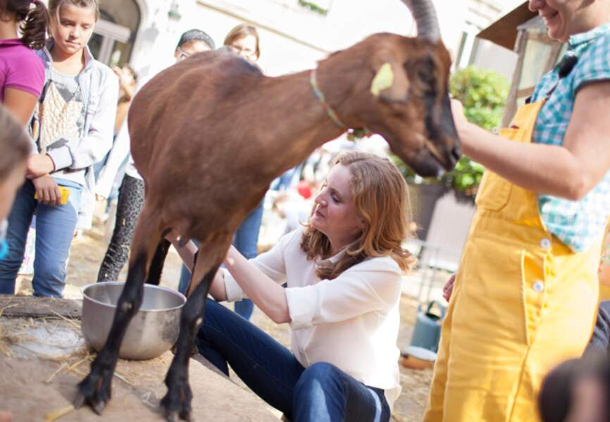 La traite des chèvres selon NKM