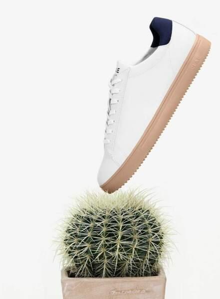 Bradley Cactus, CLAE, 135€