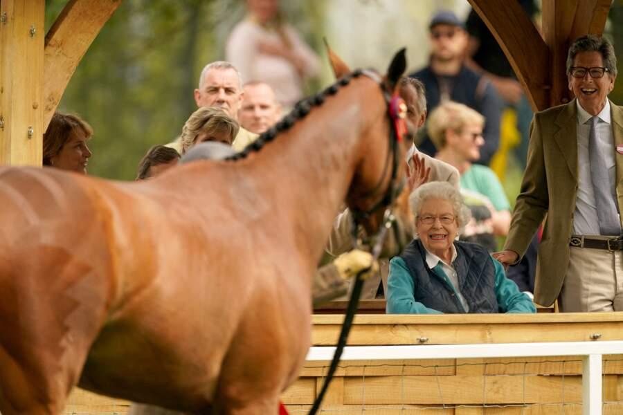 C'est la 77e édition du Royal Windsor Horse Show.