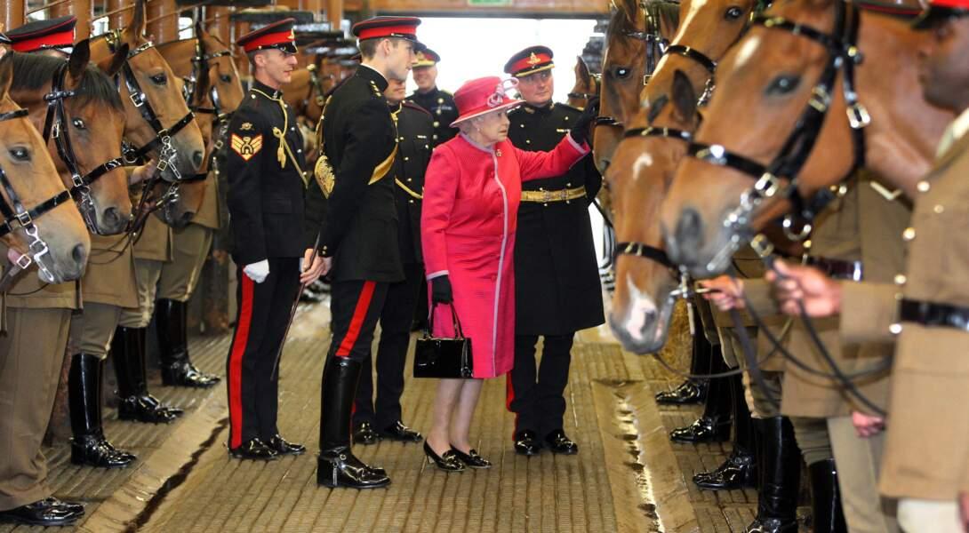 Elizabeth II rencontre le cheval nommé Harlequin qu'elle a donné aux troupes du roi à la St John's Wood Barracks, en 2011