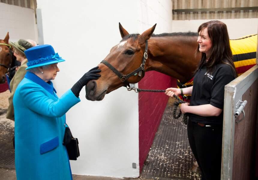 La reine rend visite à un cheval dans un hôpital équestre en 2014